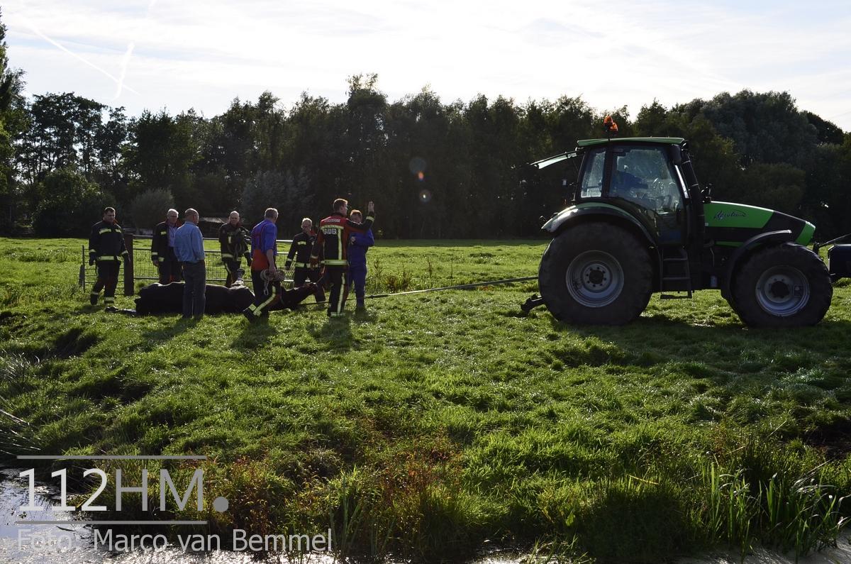 Beijerscheweg SWK (44) [112HM]