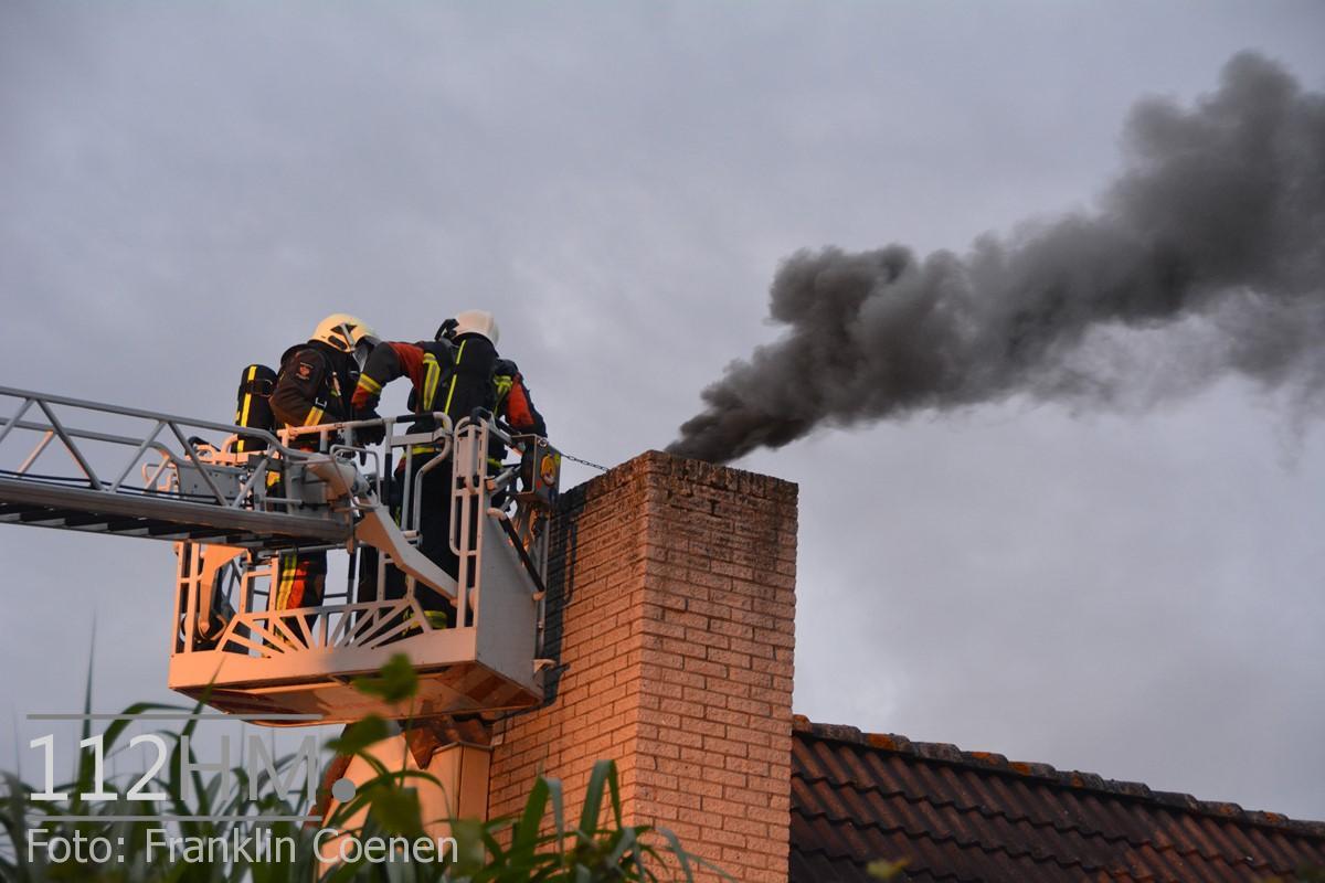 Flinke schoorsteenbrand Speenkruid NAY (13) (Kopie)