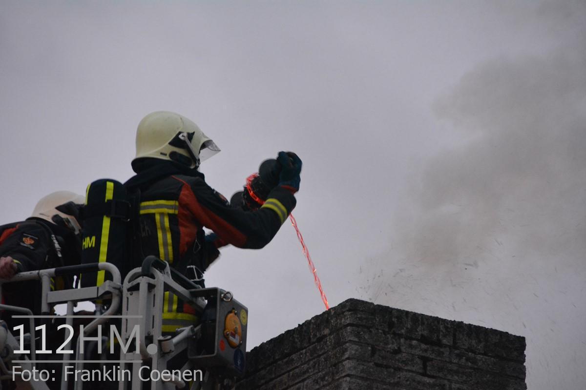 Flinke schoorsteenbrand Speenkruid NAY (18) (Kopie)