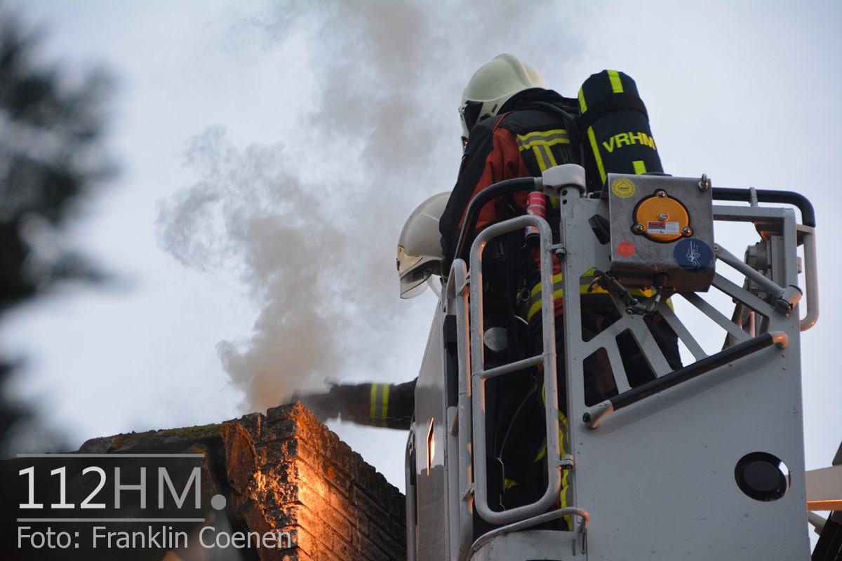 Flinke schoorsteenbrand Speenkruid NAY (6) (Kopie)