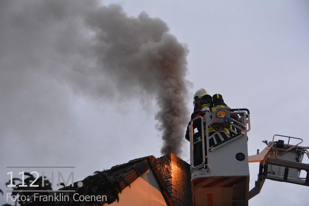 Flinke schoorsteenbrand Speenkruid NAY (9) (Kopie)