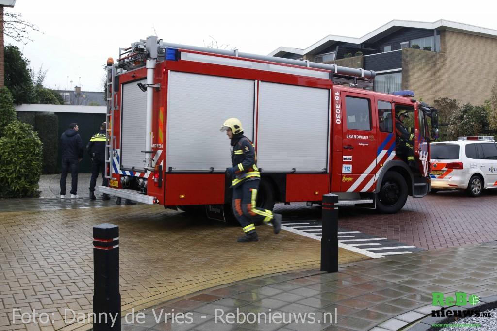 brand4-1-van-11-1024x683