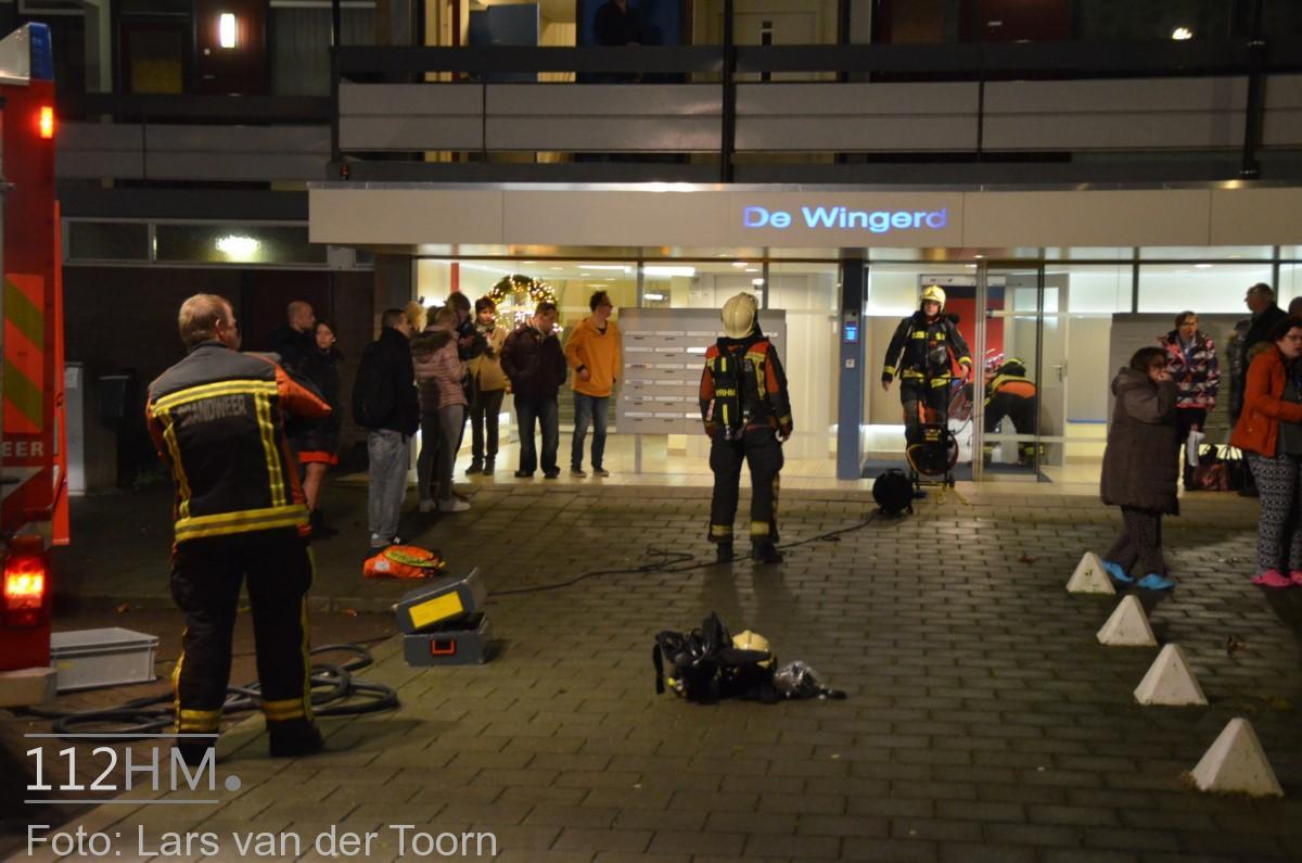 rookbom wilde wingerdlaan gda ^LT (2) [#112hm.nl]
