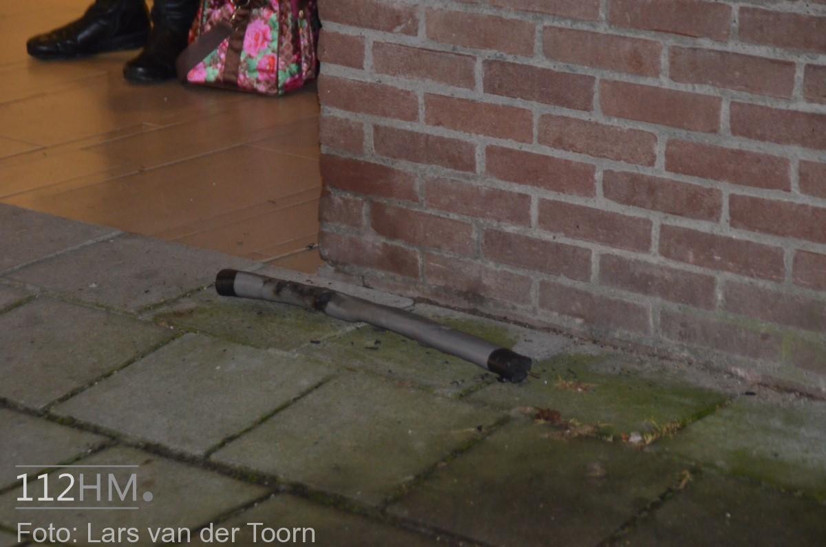rookbom wilde wingerdlaan gda ^LT (5) [#112hm.nl]