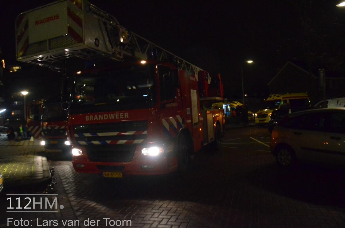 rookbom wilde wingerdlaan gda ^LT (9) [#112hm.nl]